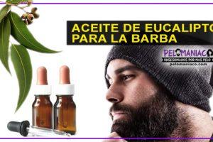 aceite de eucalipto para la barba