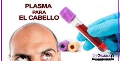plasma para el cabello plasma rico en plaquetas