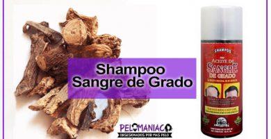 Como hacer el shampoo sangre de grado en casa