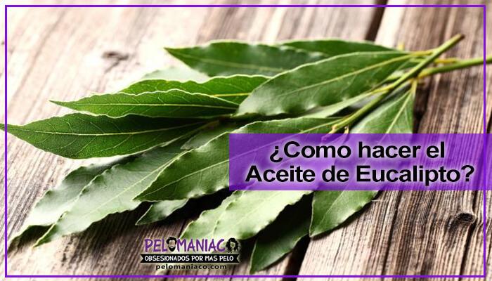 como preparar el aceite de eucalipto para el cabello