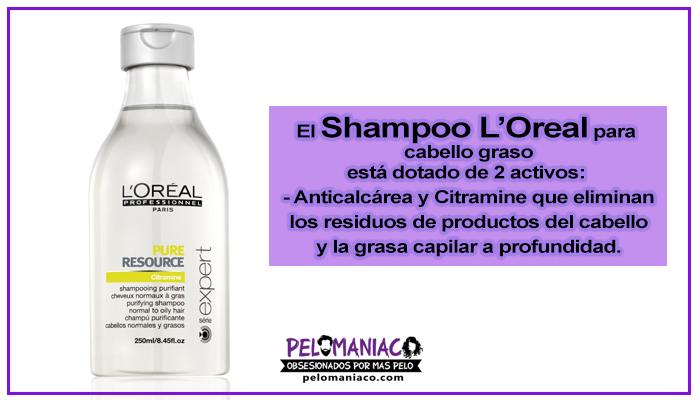 shampoo loreal para cabello graso
