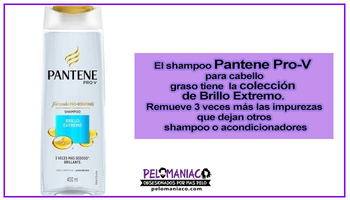 shampoo pantene para cabello graso