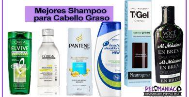 shampoo para cabello graso mejores marcas