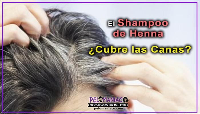 shampoo de henna cubre las canas
